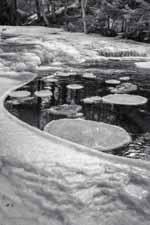 Ice Circles in a Water Circle, NH