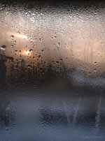 Ice on Window, Vermont 2012